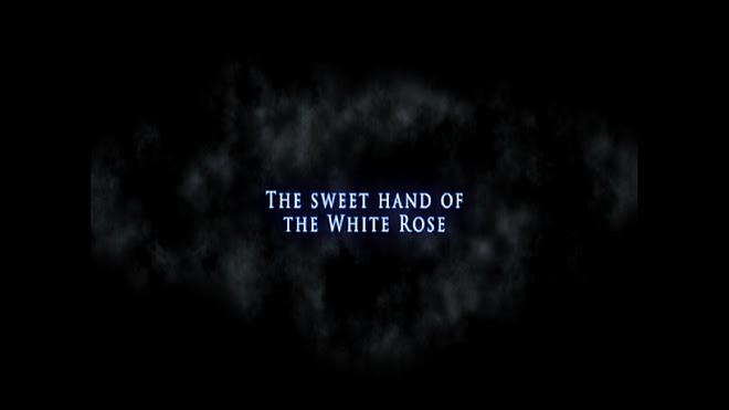 Sweet-hand-White-Rose-short