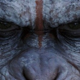 dawn-planet-apes-New-releases-july