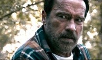 Maggie-Arnold-Schwarzenegger